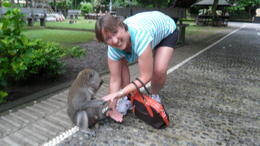 Photo of Bali Bali Cycling Eco Tour with Buffet Lunch Feeding this guy peanuts!