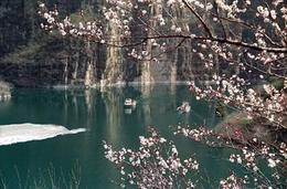 Photo of Beijing Private Tour: Great Wall of China and Longqingxia Ravine Day Tour Spring time.jpg