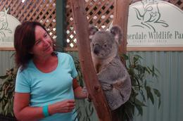 My wife, Barbara, with a Koala at Featherdale Wildlife Park , Richard H - September 2013