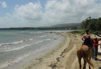 Photo of Ocho Rios Heritage Beach Horse Ride