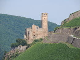 Photo of Rhine River KD Rhine Pass from Mainz Castle Ruins