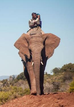 Photo of Cape Town 4-Day Garden Route Tour from Cape Town Elephant Rides
