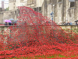 Photo of London Skip the Line: Tower of London Tickets Arch of Poppies
