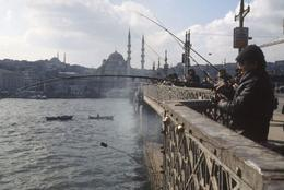 Overlooking one of Istanbul's beautiful mosques. - August 2008