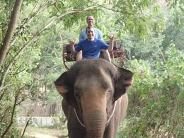 Photo of Bangkok Khao Yai National Park and Elephant Ride Day Trip from Bangkok Khai Yao National Park