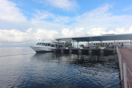 Photo of Manaus Rio Negro Cruise from Manaus to the Amazon River Pier