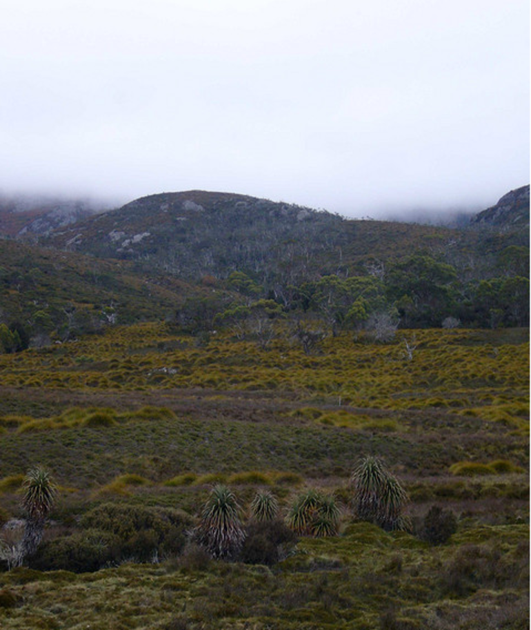 Cradle Mountain - Launceston