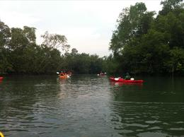 Wider waterway kayaking - May 2012
