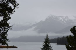 Maligne Lake and mountains in the fog , Randal S - September 2015