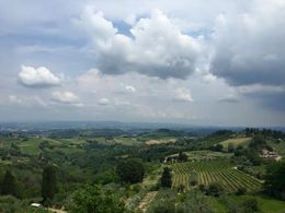 A fantastic view of the hills of Tuscany from our stop at the farm/vineyard , Whitney H - June 2015