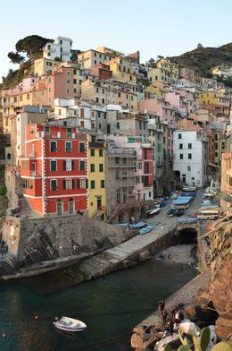 View of Riomaggiore at sunset , Amanda R - April 2016