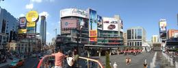 Panorama picture of the Yonge Street shopping area at the first bus stop. , alwlights - October 2013