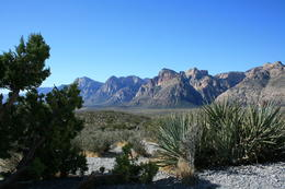 Photo of Las Vegas Red Rock Canyon Tour From the overlook