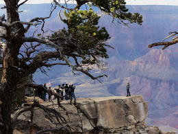 Visitors to the Grand Canyon are lured to get closer to the edge for that 'special' shot , missskybird - November 2014