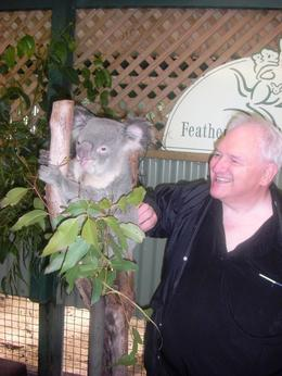 Me touching the munching koala. Although it's billed as and quot;cuddle a koala and quot;, we're not allowed to hold them, only touch them, and not near the head. , Ken Mc - May 2013