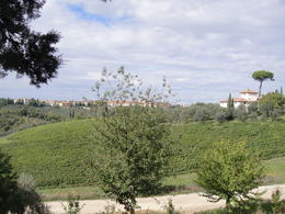 Photo of Florence Vespa Small Group Day Trip to the Chianti Wine Region Vespa tour