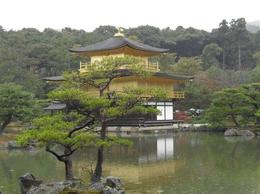 Photo of Osaka Kyoto Day Tour of Golden Pavilion, Nijo Castle and Sanjusangendo from Osaka Golden Pavilion