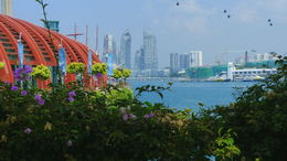 This a nice landscape with Sentosa Cable Car and city backdrop , Trevor W - October 2015