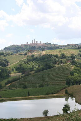 Photo of Florence Tuscany in One Day Sightseeing Tour View from Farmhouse