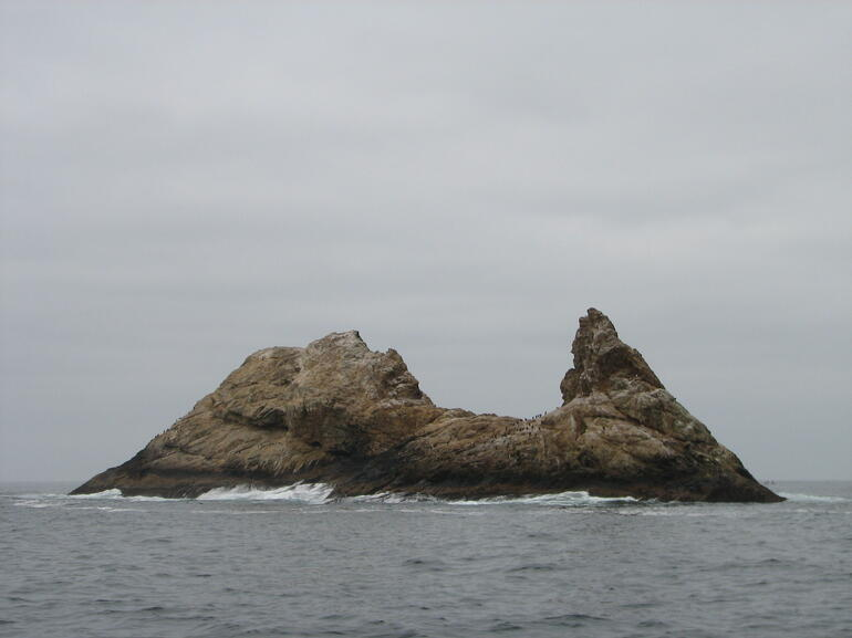 Farallon Islands - San Francisco