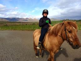 Photo of Reykjavik Viking Horse-Riding and Gulfoss and Geysir Express Tour from Reykjavik Horse riding in Iceland