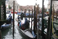 Photo of Venice Venice Walking Tour and Gondola Ride