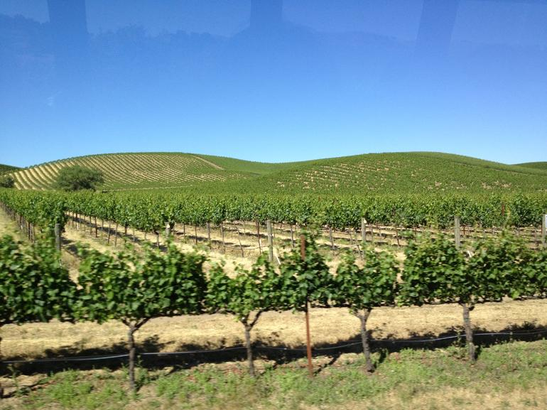 Wine Country Tour from San Francisco - San Francisco