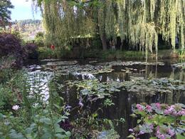 Photo of   Lily Pond in Monet's Garden