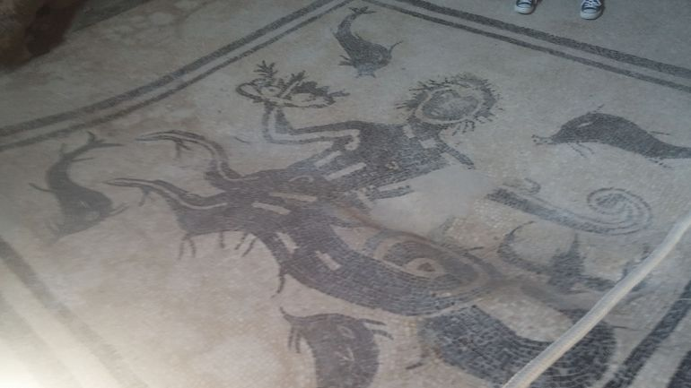 Representation of a sea deity on the floor of a bath chamber