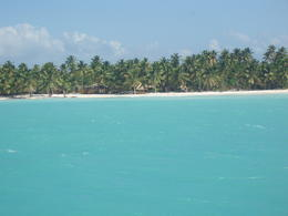Photo of Punta Cana Catamaran Cruise to Saona Island from Punta Cana On the way to shore