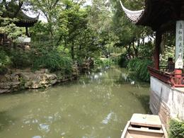 Suzhou Garden, Cat - August 2012