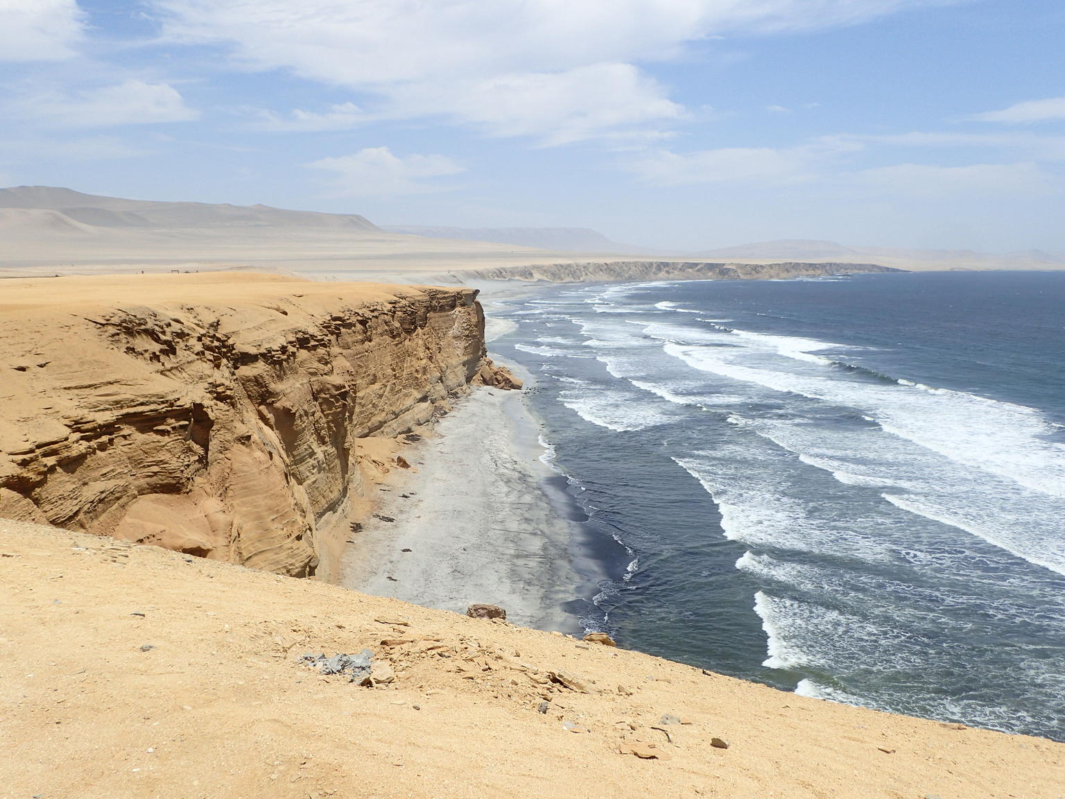 Ballestas Islands and Paracas National Reserve Day Trip from Paracas