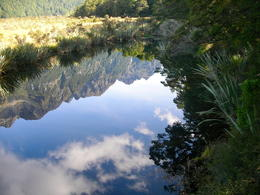 Photo taken on one of the stops, this one shot at the Mirror Lakes heading towards Milford Sound. , Sauly - March 2013