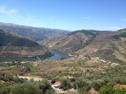 Photo of Porto & Northern Portugal Douro Valley Small-Group Tour with Wine Tasting, Portuguese Lunch and Optional River Cruise Douro Valley