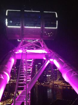 Photo of Singapore Singapore Flyer Singapore Flyer by night