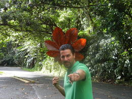 Photo of San Juan El Yunque Rainforest Half-Day Trip from San Juan tour guide Tony
