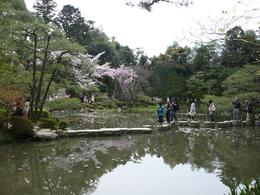 Photo of Kyoto Kyoto Full-Day Sightseeing Tour including Nijo Castle and Kiyomizu Temple Imperial Palace Gardens