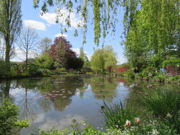 Bike tour of Monet's Garden , Wendy J - May 2016