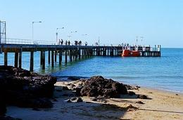 Photo of Melbourne Phillip Island: Penguins, Koalas and Kangaroos Day Tour from Melbourne Pier