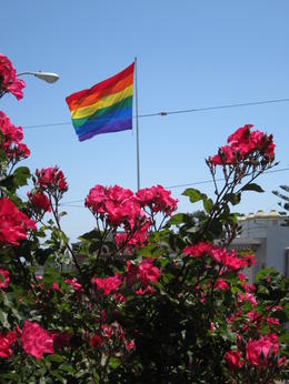 Rainbow flag with equally beautiful and colorful roses - June 2013