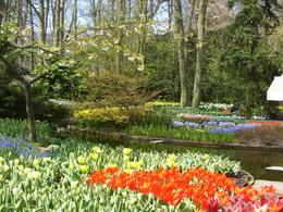Photo of Amsterdam Keukenhof Gardens and Tulip Fields Tour from Amsterdam Keukenhof Gardens Holland
