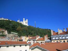 La Fourviere, Cat - January 2012