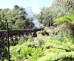 Photo of Melbourne Yarra Valley Wineries and Puffing Billy Steam Train Day Tour from Melbourne Puffing Billy