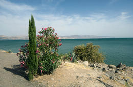 Sea of Galilee, Jerusalem. - November 2011