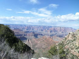looking out over the canyon , Julie K - April 2014