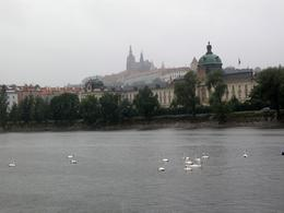 Old Gold Prague. You can see the rain drops upon the river, Aleksandra B - July 2009