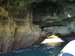 Photo of The Algarve Caves and Dolphin Watching Cruise from Albufeira IMG_2007