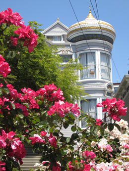 Photo of San Francisco The Castro: Historical Walking Tour of San Francisco's Gay & Lesbian District McCormick House w Roses.JPG