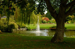 Photo of   Peaceful park with fountain: Beacon Hill Park