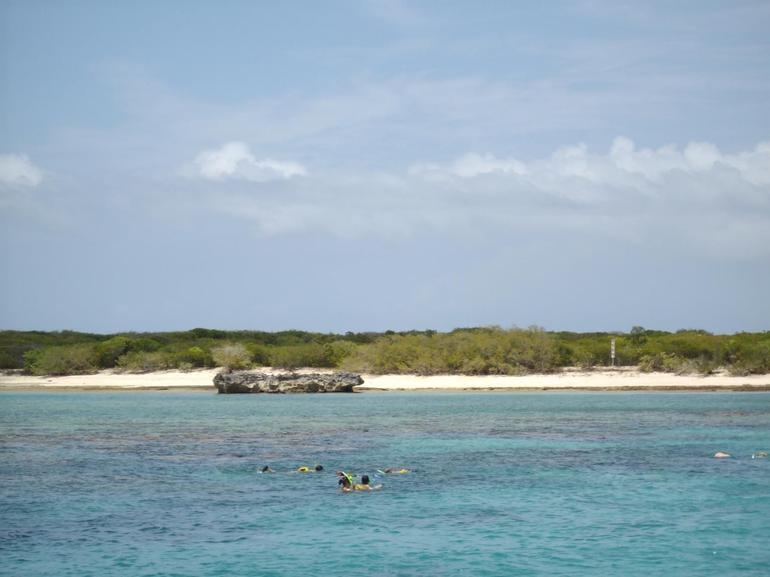 Snorkeling off shores of Secluded Isle - San Juan